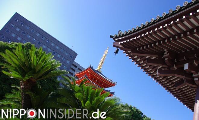 Vordergrund Palmen und Pagode in Fukuoka auf Kyushu, Hintergrund: modernes Hochhaus