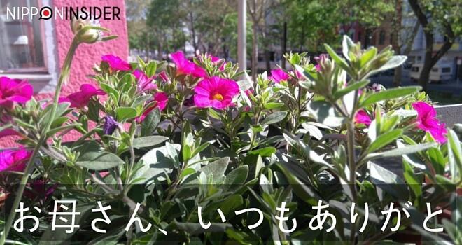 Blumenbild und Okaa-san, itsumo arigatou! Vielen Dank für alles, Mutter! | nipponinsider japanblog