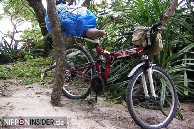 Nach erfolgreicher Suche: Mein wunderschönes Mountainbike zum Zusammenklappen | Nipponinsider