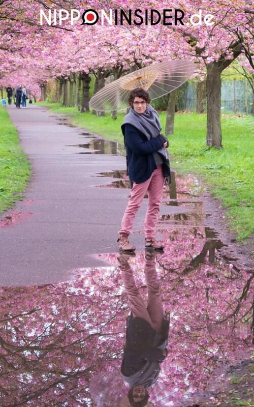 Mit dem Regenschirm vor einer Pfütze unter Kirschbäumen | Nipponinsider