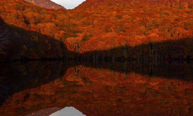Herbstl-Landschaft in Aomori - Reise in der Tohoku Region | Nipponinsider Japanblog