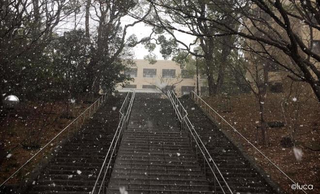 Auslandssemester in Japan: Treppe zur Uni Kobe bei Schneefall