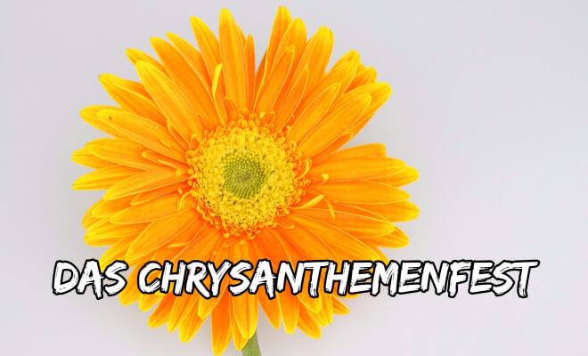 Das japanische Chrysanthemenfest Kiku no Sekku am 9.9. | Nipponinsider Japanblog