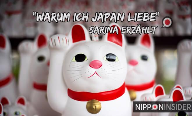 Warum ich Japan liebe - Sarina erzählt auf Nipponinsider | Bild: Meneki Neko, japansiche Winkekatzen | Nipponinsider