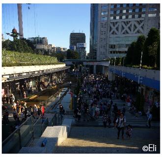 Japanliebe Gastartikel von Eli: Event