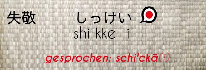 Entschuldigung auf Jpaanisch: #10 shikkei Text auf Japanisch