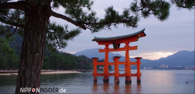Torii bei Miyajima | Nipponinsider Japanblog