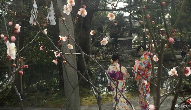Kanazawa Pflaumenblüte und zwei Frauen im Kimono