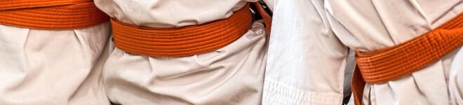 Bild: Judo. 11 Gründe, Japanisch zu lernen