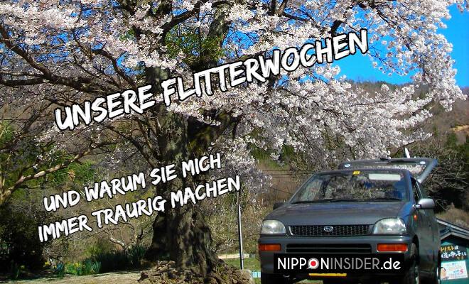 Unsere Flitterwochen in Japan und warum sie mich immer traurig machen. Bild vom japanischen Auto unter Kirschbäumen | Nipponinsider Japanblog