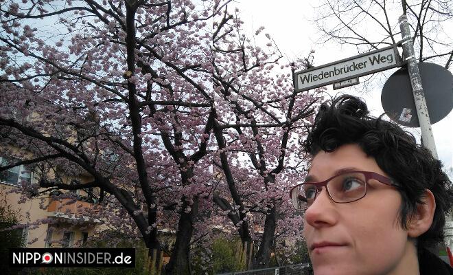 Berliner Weg in Berlin | Kirschblüten und Portraitfoto | Nipponinsider