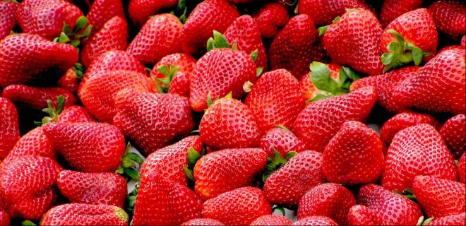 rote Erdbeeren zum Ichigo no Hi, Tag der Erdbeere
