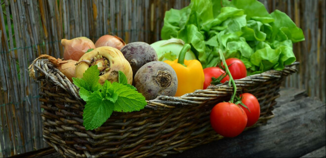 Korb voller Gemüse. Yasai no Hi am 31. August. Tag des Gemüses