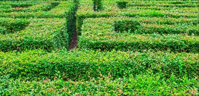 ein grünes Labyrinth Meito no Hi am 10. Mai. Tag des Labyrinths