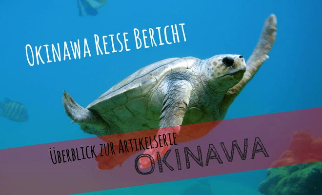 Okinawa Reisebereicht. Überblick über die Artikelserie. Bild von einer Meeresschildkröte | Nipponinsider