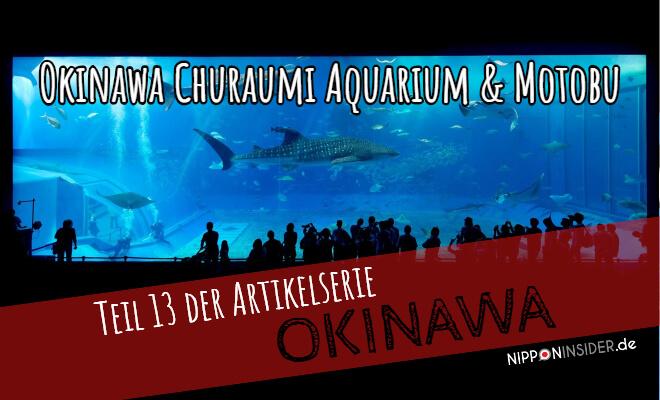 Okinwawa Reisebericht: teil 13 der Artikelserie. Okinawa Churaumi Aquarium & Motobu | Foto vom Hauptbecken im Aquarium | Nipponinsider