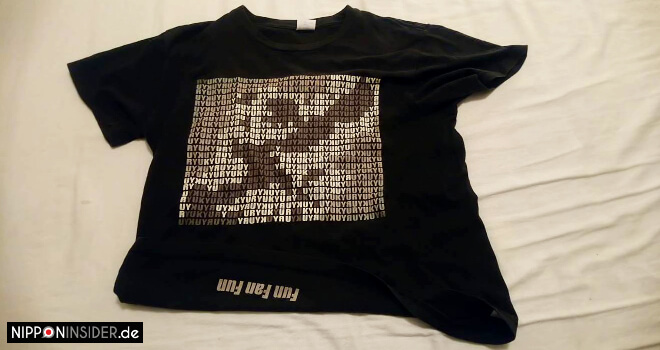 Ie Shima Okinawa Ryukyu T-Shirt | Nipponinsider