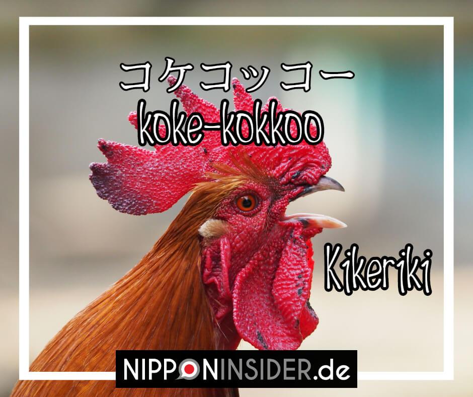 ein krähender Hahn macht auf japanisch kokkekokko und nicht kikeriki | japanische Tierlaute auf Nipponinsider