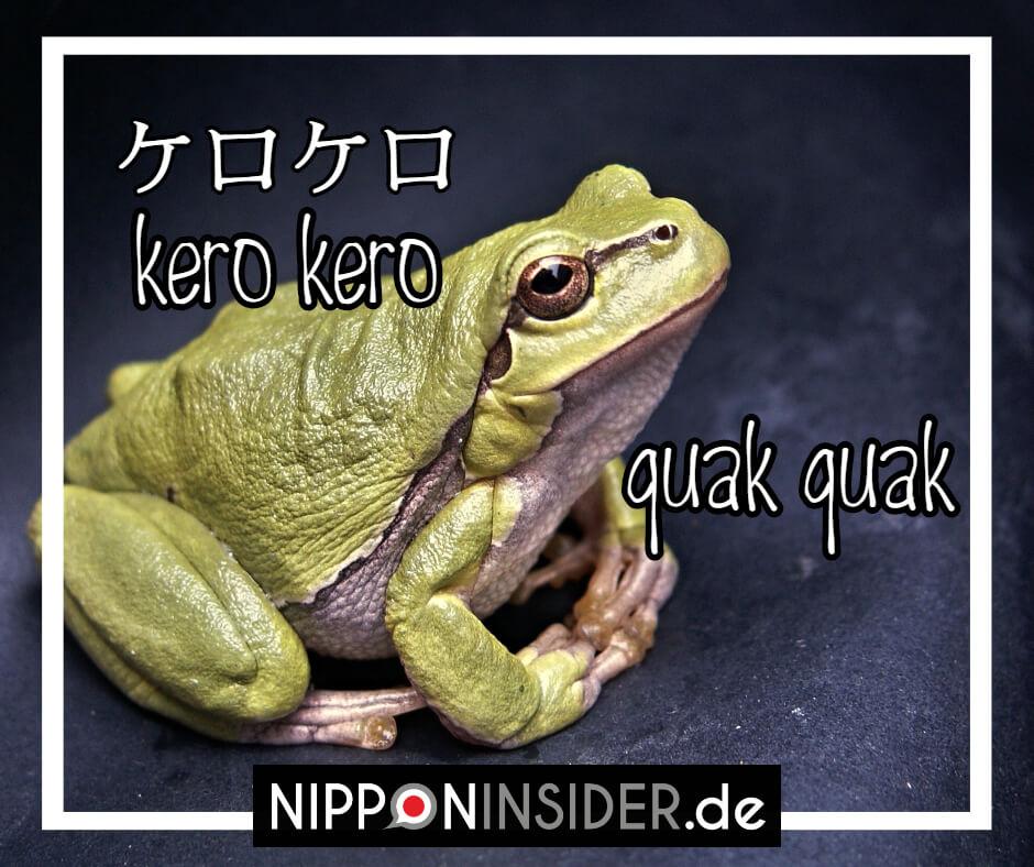 Der Frosch macht auf japanisch kero kero und nicht quark . Japanische Tierlaute auf Nipppninsider