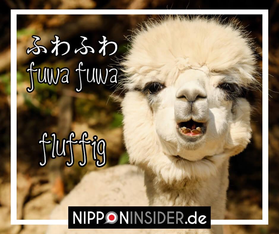 Bild: ein Schaf mit unglaublich fluffigem Fell. Text: Fuwafuwa ist ein japanischer umgangsprachlicher Ausdruck für fluffig. Japanische Ausdrücke auf Nipponinsider