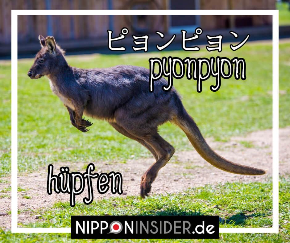 """Bild: ein hüfoendes Kangaroo. Text: pyonpyon ist ein japanischer umgangsprachlicher Ausdruck für """"hüpfen"""". Japanische Ausdrücke auf Nipponinsider"""