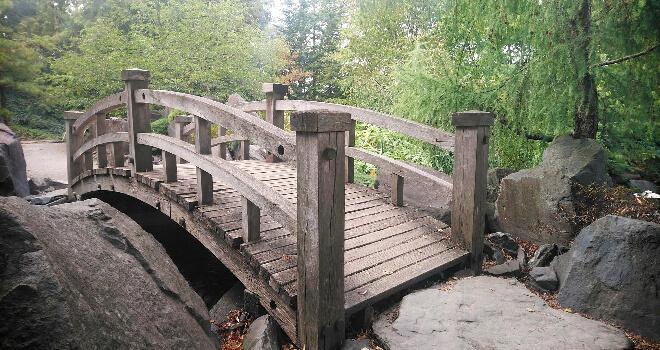 Holzbrücke im japanischen Garten im Ega Park in Erfurt